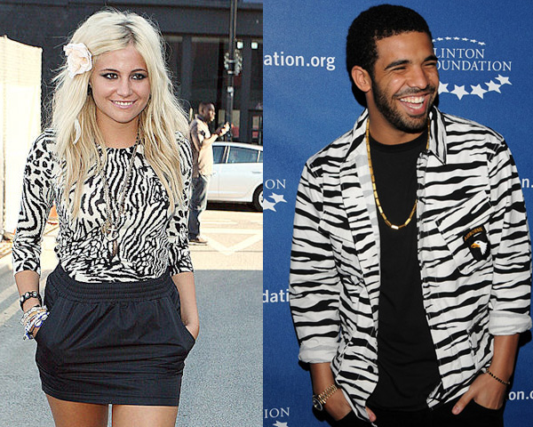 tops and shirts in zebra print